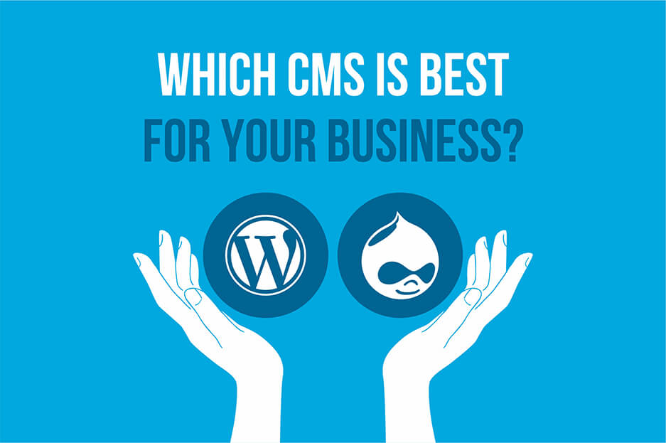 which CMS is best for your business